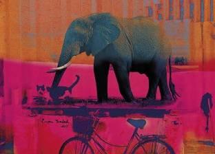 فانتازيا: فيل على الكورنيش وزرافة فى «التحرير»