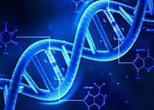 الحمض النووي يكشف الستار عن جريمة قتل عمرها 32 عاما