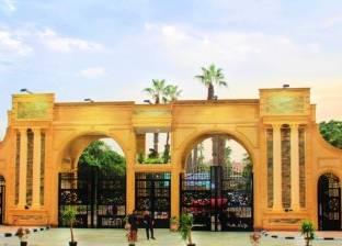 """جامعة المنصورة تعدل شرط اللغة و""""ICDL"""" لتسجيل الماجستير والدكتوراه"""