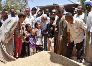بالصور| محافظ أسوان يتفقد مشروع شباب الخريجين بالنقرة مع بدء حصاد القمح