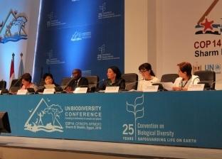 وزيرة البيئة من «شرم الشيخ»: مصر تدعم الحفاظ على ثروات أفريقيا.. ووقف نزيف مواردها الطبيعية