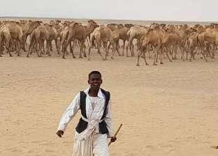 عبد الغفار يتلقى تقريرا حول قافلة جنوب الوادي إلى حلايب وشلاتين