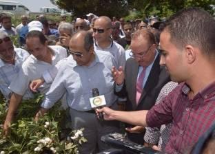 """وزير الزراعة يتناول الشاي مع الفلاحين في افتتاح """"جني القطن"""" ببني سويف"""