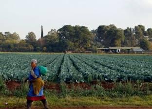 «خصوبة أفريقيا» تُسيل لعاب الشرق والغرب