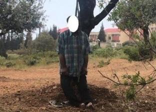 معلقا على جذع شجرة.. العثور على جثة موظف في كفر الشيخ