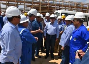 مسئول بالبترول: مصر تحاول استغلال تخمة النفط لسد احتياجات السوق المحلي