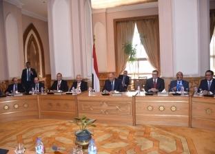 وزير الخارجية يؤكد دعم مصر للسلام والاستقرار في جنوب السودان