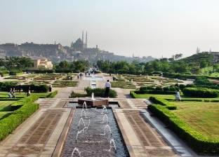 الخميس.. افتتاح مكتبة حديقة الأزهر المتنقلة
