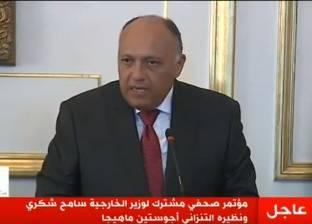 وزير الخارجية: قضايا الإرهاب أصبحت ضاغطة على الدول الإفريقية كافة