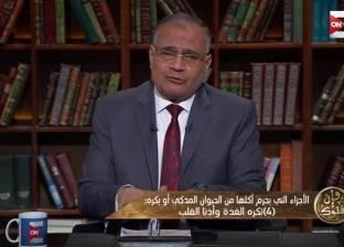 سعد الدين الهلالي: تربية القطط «حرام» عند بعض الفقهاء