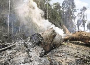 بيرو وكولومبيا تقترحان عقد قمة إقليمية طارئة بشأن حرائق الأمازون