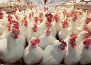 """""""الوقائع"""" تنشر إشهار جمعية لتنمية الثروة الحيوانية والداجنة في الشرقية"""