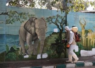 نقابة الصحفيين تنظم زيارة افتراضية لحديقة الحيوان عبر فيسبوك