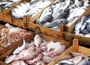 أسعار السمك اليوم الثلاثاء 16-7-2019 في مصر