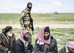 القاهرة لـ«التحالف ضد داعش»: فكر الإخوان يسيطر على تنظيمات الإرهاب