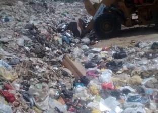 محافظ الغربية يوجه بشن حملات نظافة وتطوير البنية التحتية في المحلة