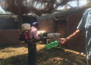 """بيطري الدقهلية ينظم قافلة مجانية في """"الشبول"""" للاهتمام بصحة الحيوان"""