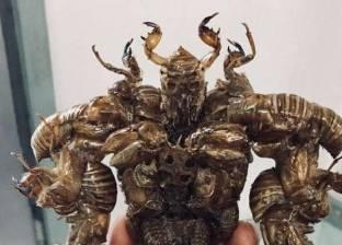 بالصور| طالب ياباني يصنع تماثيل من الحشرات
