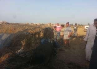"""""""شؤون البيئة"""" تنقذ مزرعتين للمواشي بمنية النصر في الدقهلية من الاحتراق"""