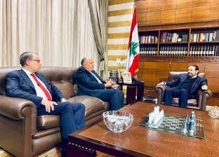 """""""شكري"""": لقاء سعد الحريري كان إيجابيا.. وطرحنا كل القضايا الإقليمية"""