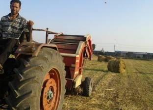 حصاد 190 ألف فدان أرز بنسبة 64% في كفر الشيخ