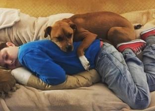 """كلبة تتمكن من علاج طفل عانى من """"التوحد"""" 7 سنوات في أمريكا"""