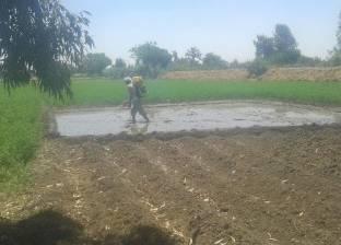 وزير الري: غرامات مقابل استغلال المياه الزائدة لزراعات الأرز المخالف