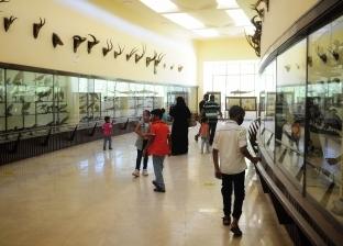 تزايد الإقبال على حديقة الحيوان بالإسكندرية في ثالث أيام عيد الأضحى