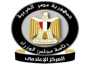 """""""منها زيادة أسعار الأرز وتذاكر القطارات"""".. الحكومة تنفي 10 شائعات"""