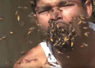بالفيديو| هندي يأكل آلاف النحل حيا