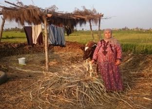 «اعتماد».. 25 عاماً بين غيط الأب وأرض الزوج: لا أحلم سوى بالستر