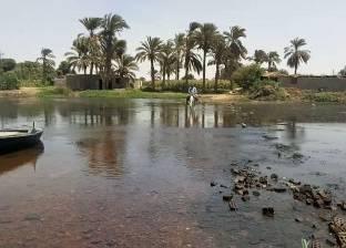 بنى سويف: حملة موسعة لإزالة التعديات على «الجزر النيلية» تقودها «الرى»