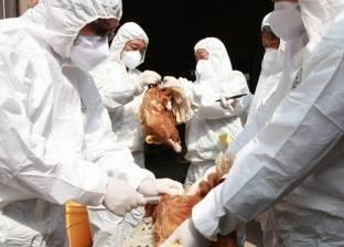 نيبال تبلغ عن تفشي سلالة شديدة العدوى من إنفلونزا الطيور