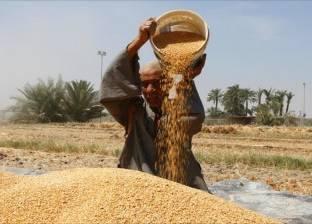 «النيابة الإدارية» تحيل اثنين من مسئولى «القابضة للصوامع» إلى المحاكمة التأديبية فى «فساد القمح»