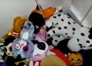 فيديو| لن تصدق.. أب يعثر على أفعى سامة بين ألعاب ابنته