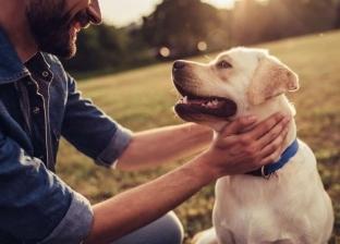 دراسة أمريكية: امتلاك كلب يطيل العمر
