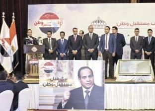 عضو الهيئة العليا لحزب مستقبل وطن يشيد بجولات الرئيس الخارجية