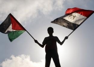 رسميا وشعبيا.. «مصر الكبيرة» تدعم فلسطين: مساعدات إنسانية وموقف حاسم