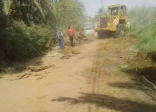توسعة ورصف طريق أحمد مختار بقرية الموشية في الوادي الجديد