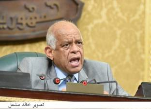 عبدالعال: أقولها بقلب مطمئن القضاء المصري يتمتع باستقلال يفوق دول العالم المتقدمة