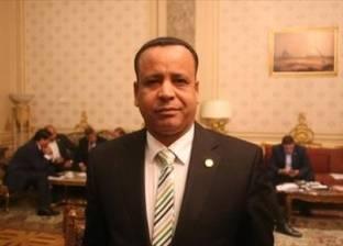 """برلماني يطالب المواطنين بدعم """"السيسي"""" لاستكمال المشروعات العملاقة"""