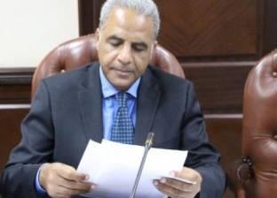 """عضو """"الأعلى للإعلام"""": المجلس بدأ توفيق أوضاع القنوات مع المنطقة الحرة"""
