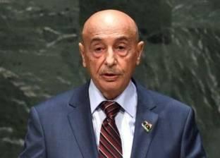 """30 نائبا ليبيا يطالبون بنقل البرلمان إلى """"طبرق"""""""