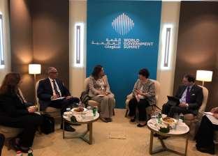السعيد: الحكومة المصرية تسعى لنشر فكر الحوكمة