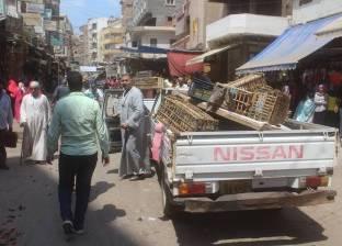 تحرير 98 محضر إشغالات و19 حاجز خرساني في حملة بالغربية