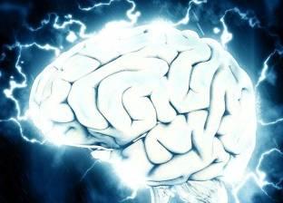 درسة حديثة توضح العلاقة بين بنية الدماغ والنجاح المالي