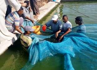بالصور| إطلاق الذريعة السمكية ببحيرة ناصر بحضور رؤساء جمعيات الصيد