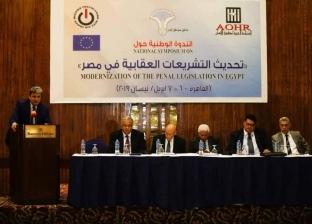 """""""شيحة"""": مصر تتعرض لانتقادات غير مبررة بعد ثورة 30 يونيو"""