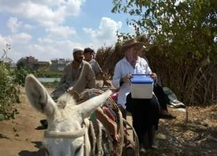 تحصين 4 آلاف رأس ماشية ضد الحمى القلاعية والوادي المتصدع في دمياط