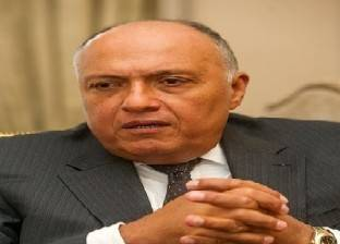 سامح شكري يستقبل مدير عام اتحاد وكالات أنباء منظمة التعاون الإسلامي
